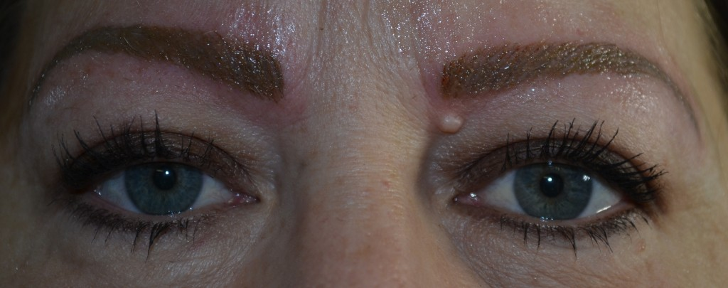 Waxy Boutique Eyebrow Feathering Gallery